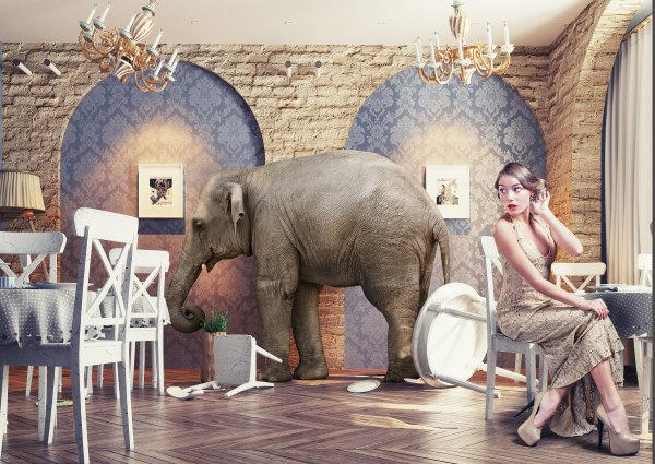 Hypnosis: The Elephant in the Room